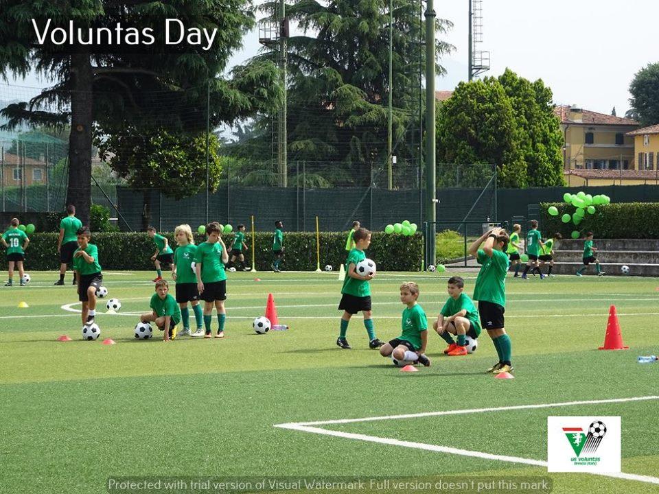 Voluntas Day 13